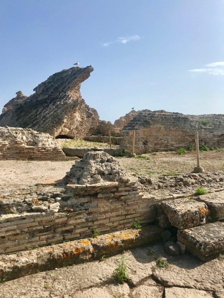 Sardegna9